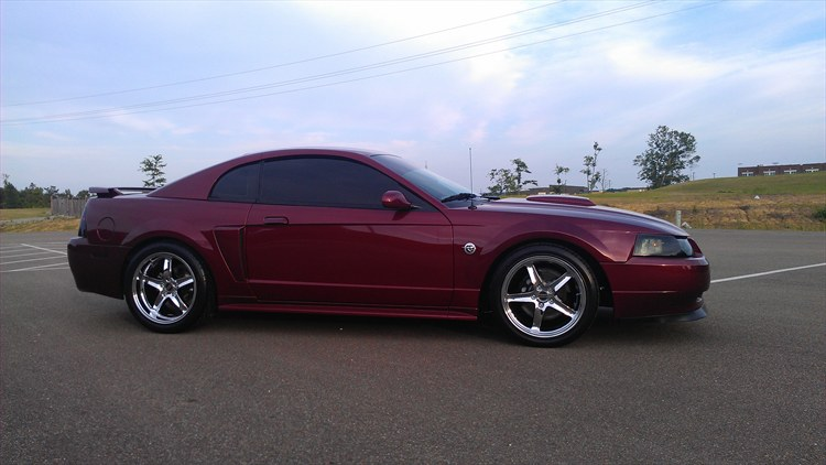 Another I-AINT-GOT-IT 2004 Ford Mustang post... - 16075813