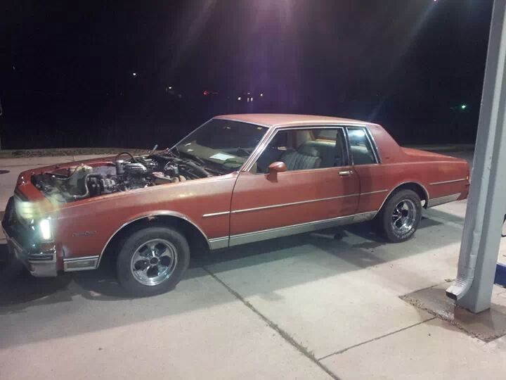 1980 Caprice Classic Coupe - 19026188