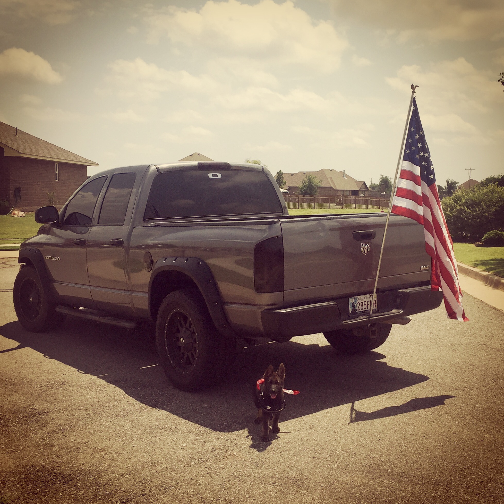 Big trucks and German Shepherds... Merica - 19130702