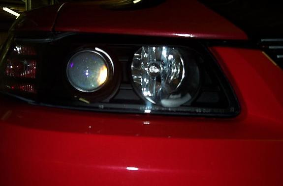 Another roush2857 2000 Ford Mustang post... - 815280