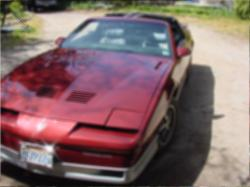 lukerative 1987 Pontiac Trans Am