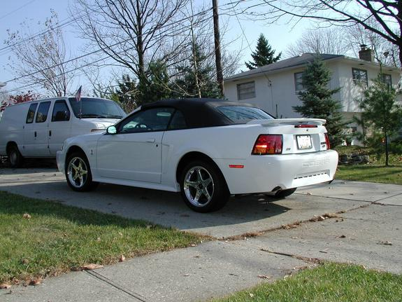 Another whitesnake 2001 Ford Mustang post... - 999751