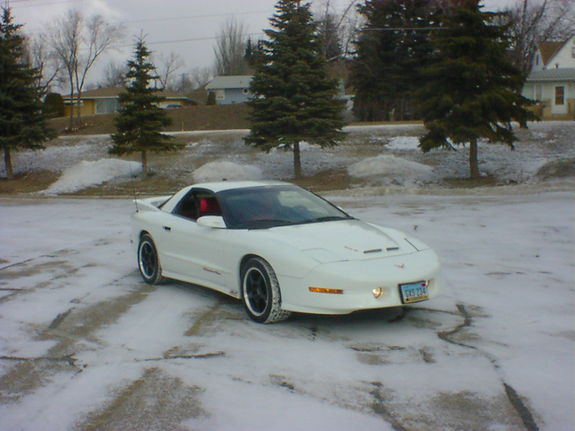 stunzeed2 1995 Pontiac Trans Am