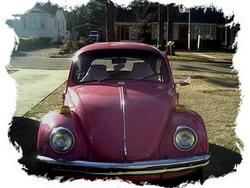Pink_Bug_Girls 1970 Volkswagen Beetle