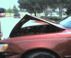 Another Aingeal_Ena 1997 Toyota Corolla post... - 1222381