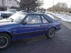 Another Intrigue85Five0 1985 Ford Mustang post... - 1269252