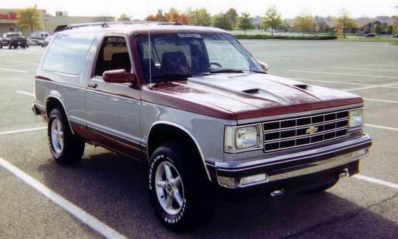 Another 95Snake103 1990 Chevrolet Blazer post... - 1325088