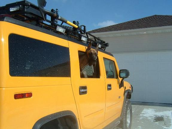 Another yellowh2 2003 Hummer H2 post... - 1327956