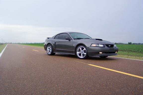 Another DrkShadowGrey 2003 Ford Mustang post... - 1336189