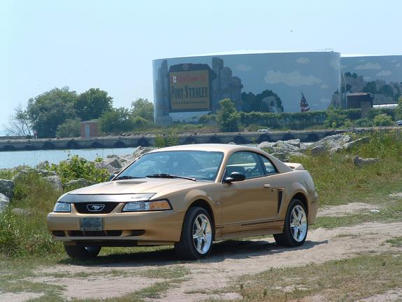 Another ryanbutton 2000 Ford Mustang post... - 1418004