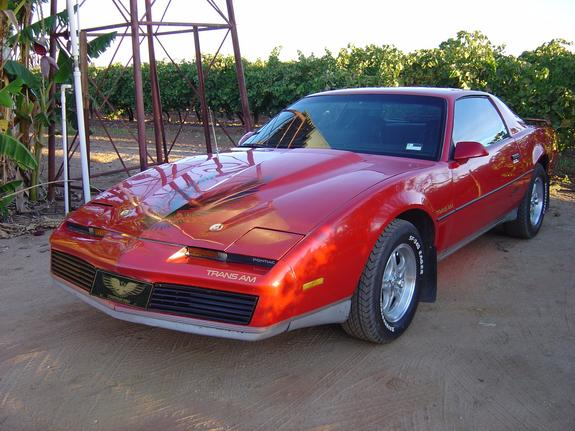 Another gregjo 1982 Pontiac Trans Am post... - 1450948