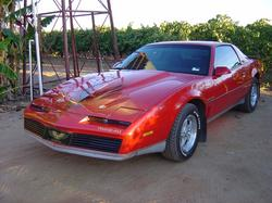 gregjos 1982 Pontiac Trans Am