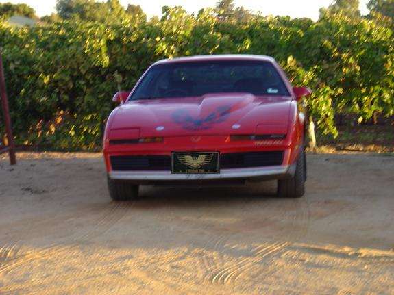 Another gregjo 1982 Pontiac Trans Am post... - 1450950