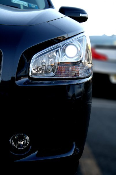 Another gto61 2009 Nissan Maxima post... - 1468039