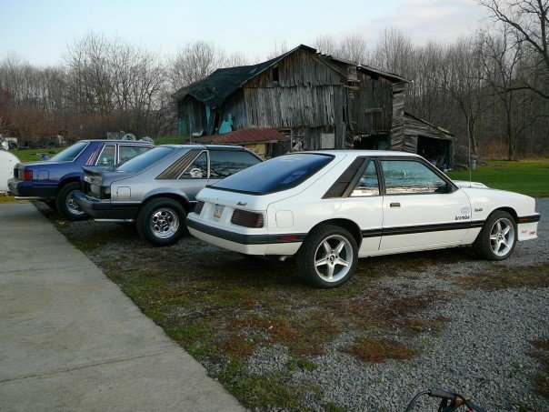 Another 83Capri 1983 Mercury Capri post... - 1520425
