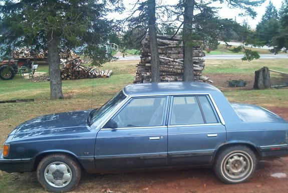 1989chev 1989 Plymouth Reliant 3406570001 Large