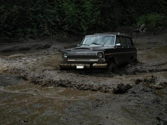 Another cancerjeep 1981 Jeep Wagoneer post... - 1561314