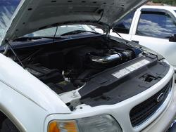 genscoman1 1998 Ford Expedition