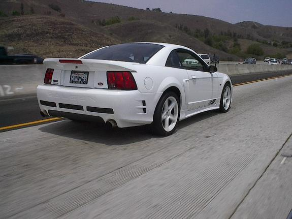 Another s281812 2000 Saleen Mustang post... - 1602371
