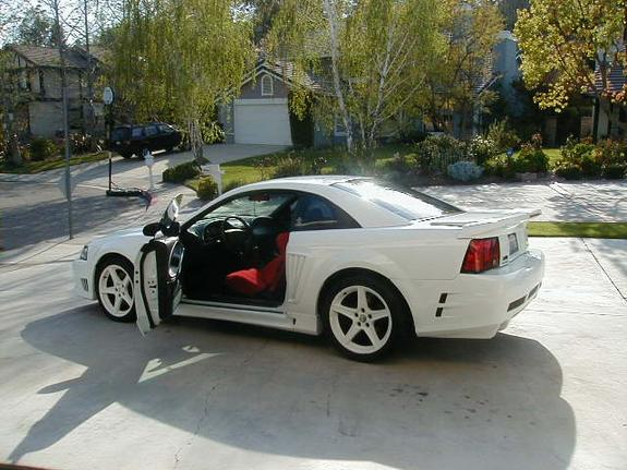 Another s281812 2000 Saleen Mustang post... - 1602380