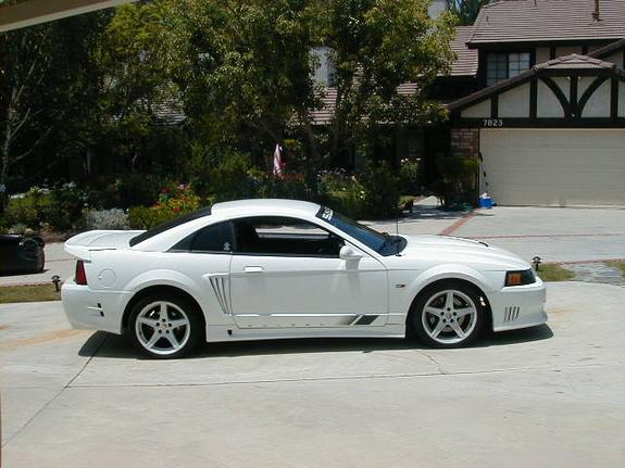 Another s281812 2000 Saleen Mustang post... - 1602391