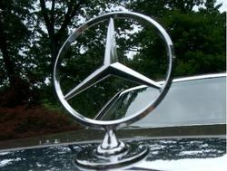 Sheldawgs 1991 Mercedes-Benz S-Class