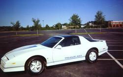 shep08s 1984 Pontiac Trans Am