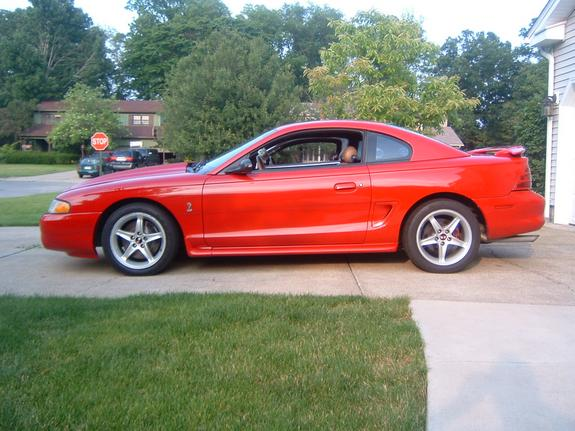 Another 5LtrSVT 1995 Ford Mustang post... - 1929182