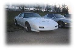 tagal91s 1991 Pontiac Trans Am