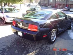 Another mustang1031 2005 Ford Mustang post... - 2176380