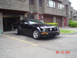 Another mustang1031 2005 Ford Mustang post... - 2176388