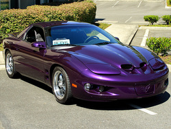 tehpurpl3s 1998 Pontiac Firebird