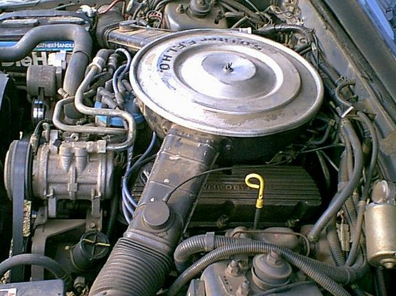 Another pocket3799 1984 Ford Mustang post... - 2263281