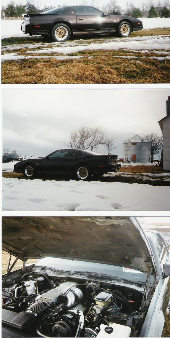Another midwestxt6 1987 Pontiac Trans Am post... - 2367854