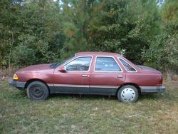 drayconwaysc 1984 Ford Tempo