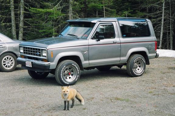 slivercat 1986 ford bronco ii specs photos modification. Black Bedroom Furniture Sets. Home Design Ideas