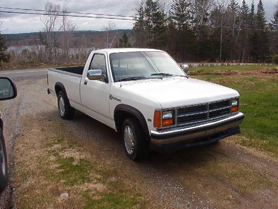 Large on 2003 Dodge Dakota Club Cab