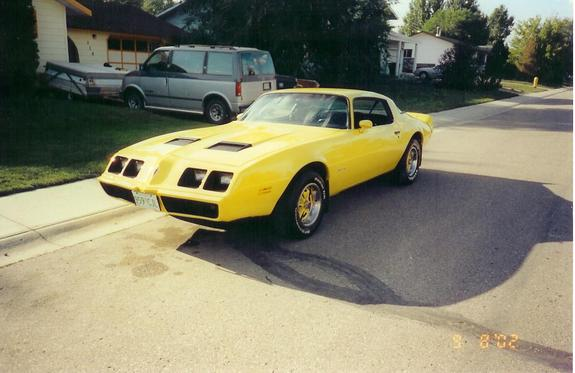 Another 79formulafirebrd 1979 Pontiac Firebird post... - 2572272