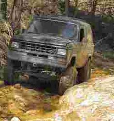 rmyers2051s 1988 Ford Bronco II