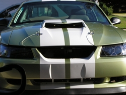 dward650 2000 Ford Mustang