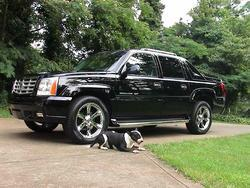 Another domainshottest 2004 Cadillac Escalade post... - 2672274