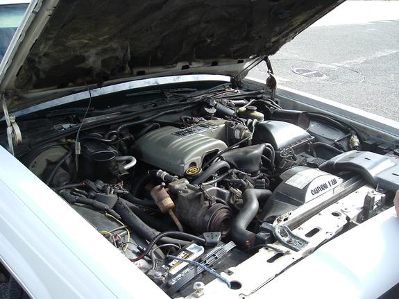 Large on Ford 3 0 Engine Problems