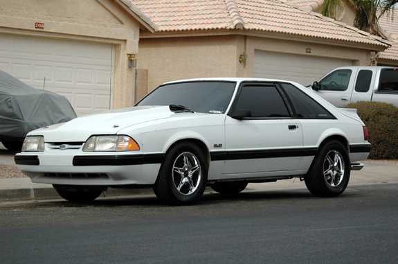 desertstallion 1989 Ford Mustang