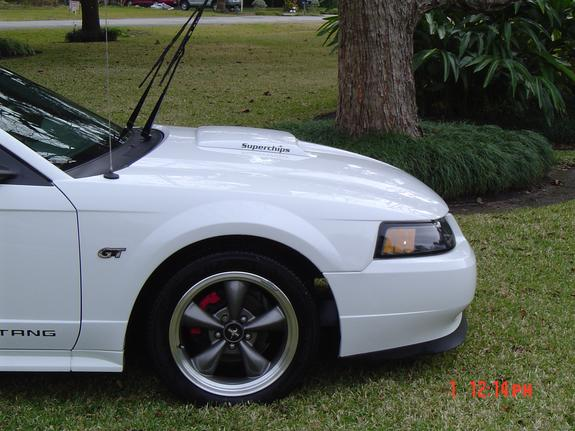 smithers5505 2003 Ford Mustang