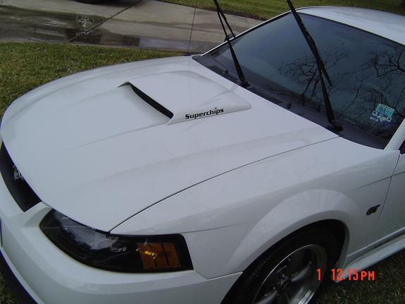 Another smithers5505 2003 Ford Mustang post... - 3009577