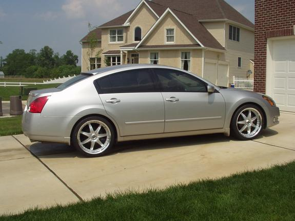 Andymax95 2004 Nissan Maxima Specs Photos Modification Info At