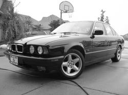 BIMMA 1995 BMW 5 Series