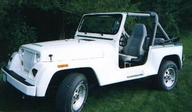 moldyfudge 1991 Jeep Wrangler 3190023