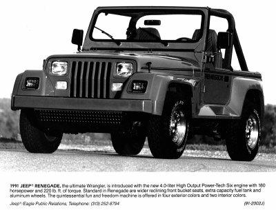 moldyfudge 1991 Jeep Wrangler 3190026