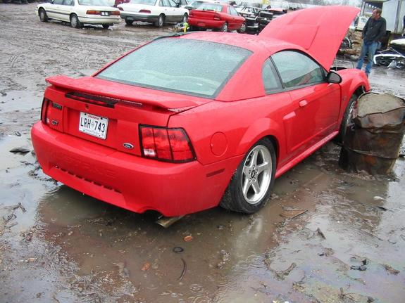 Another fded03 2003 Ford Mustang post... - 3278085